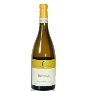 Bottiglia di Fiano di Avellino-Bechar-di Antonio Caggiano